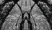 Rorschach panorama