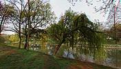 Pe malul râului Bega, Timişoara