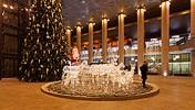 Christmas holiday (3), Timişoara